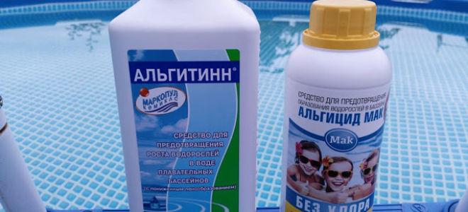 Что такое альгициды для очищения бассейна
